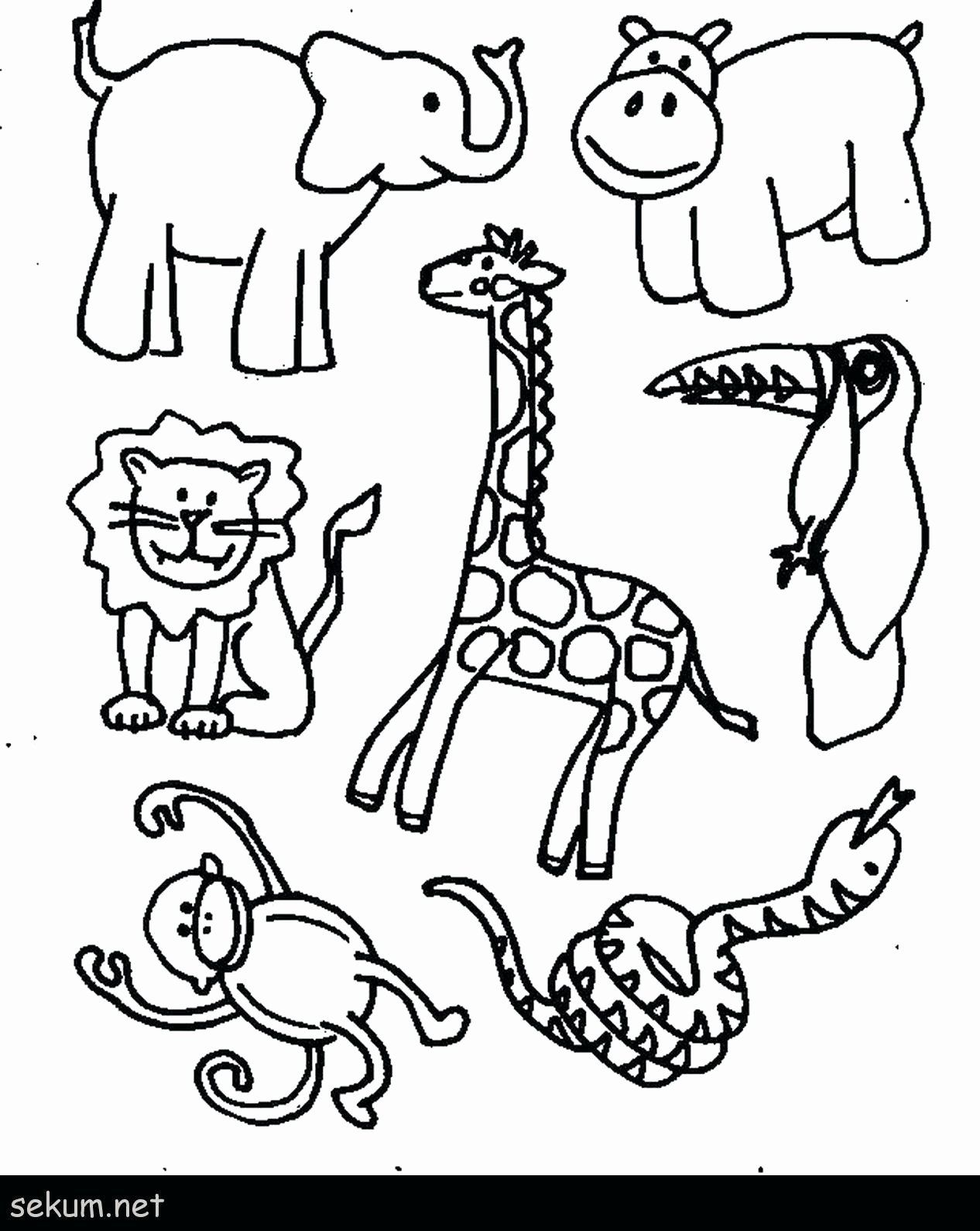 Coloring Pages For Animals In The Jungle Inspirational Safari Animal Coloring Pages Free O In 2020 Zoo Coloring Pages Zoo Animal Coloring Pages Jungle Coloring Pages