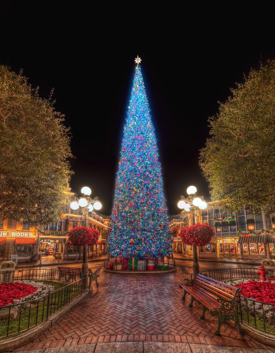 disneyland at christmas time - Disneyland Christmas Time