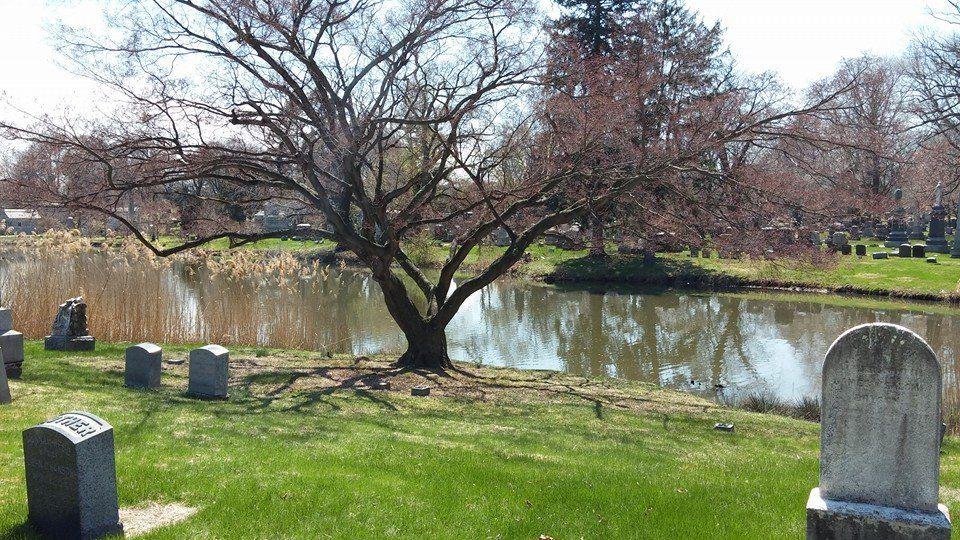 Woodlawn's lake Woodlawn cemetery, Woodlawn, Cemetery