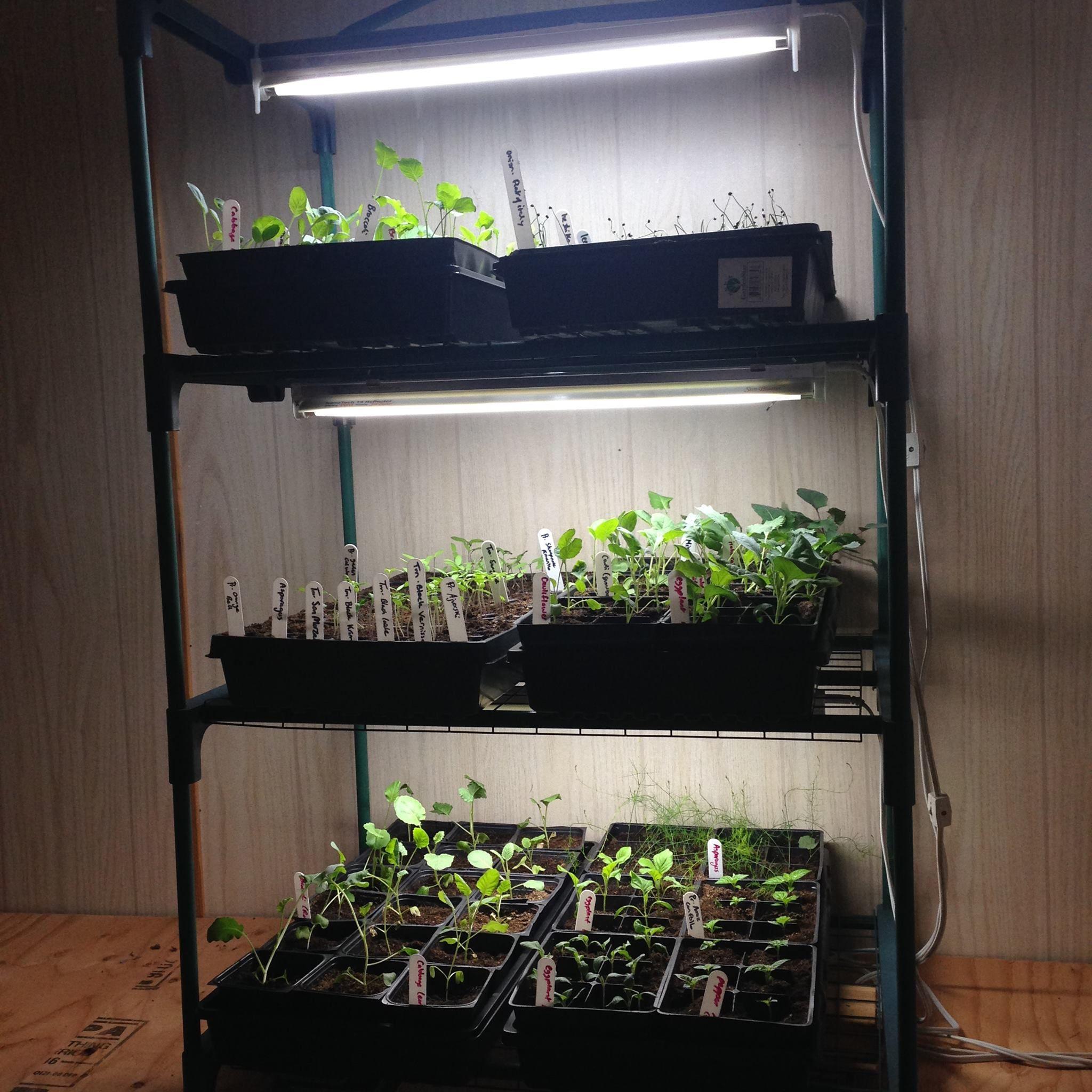 Grow Lights & Indoor Greenhouses Indoor vegetable