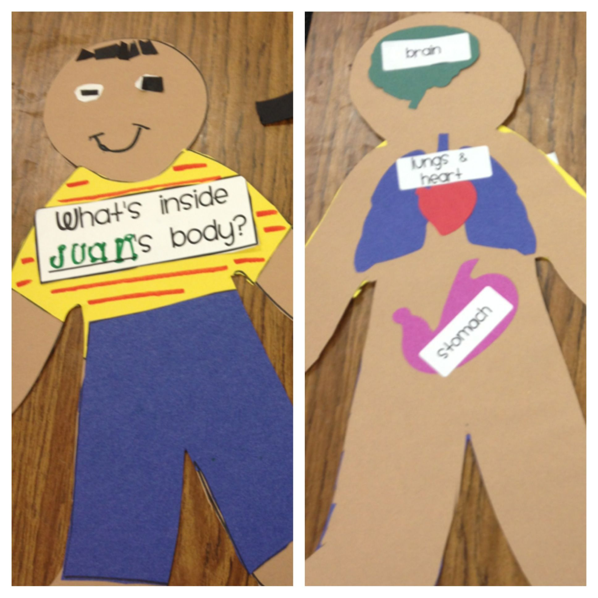 Human Body Project For Kinder