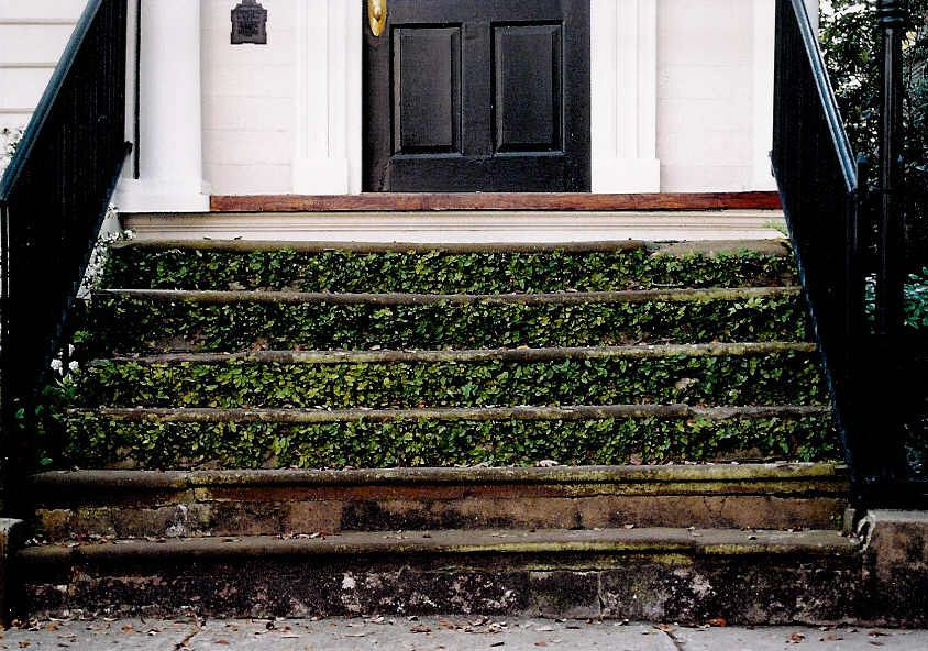Pin by Christy on Charleston Photos My house, Home, House
