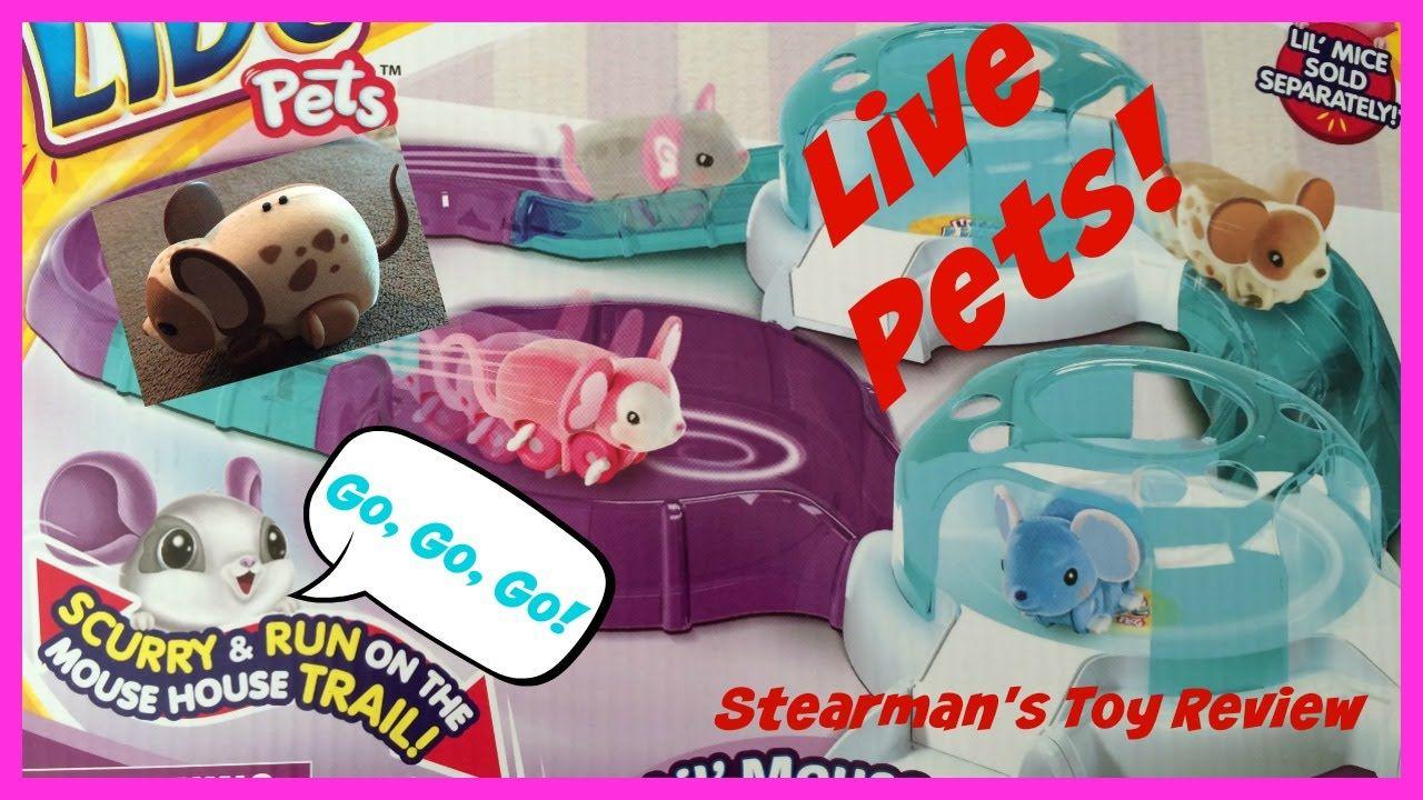 Little Live Pets The Mouse Lil Mouse House Trail Watch The Mouse Go R Little Live Pets Pets Toys