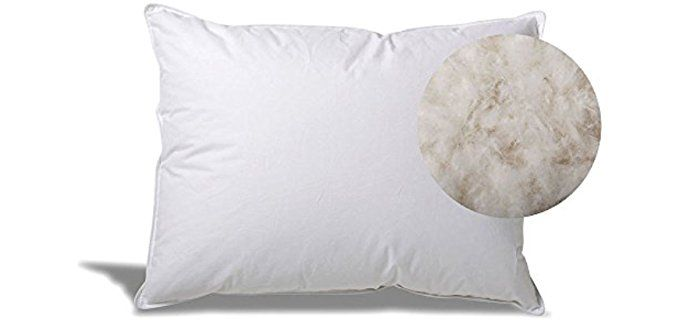 Best Feather Pillows Ultimate Guide For All You Need To Know Http Pillowclick Com Best Feather Pillows Ultimate G Goose Down Pillows Pillows Down Pillows