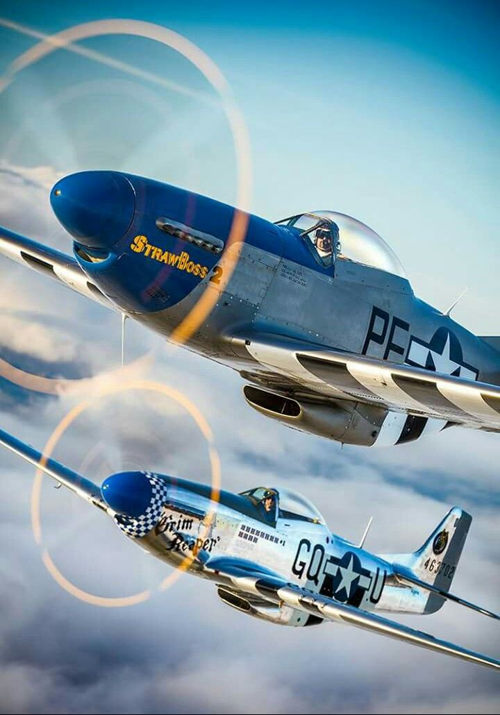 P-51 MUSTANG  BOOK NEU DARLING-CL