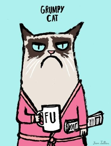 Grumpy Cat By Jean Jullien Humor Grumpy Cat Cats Illustration