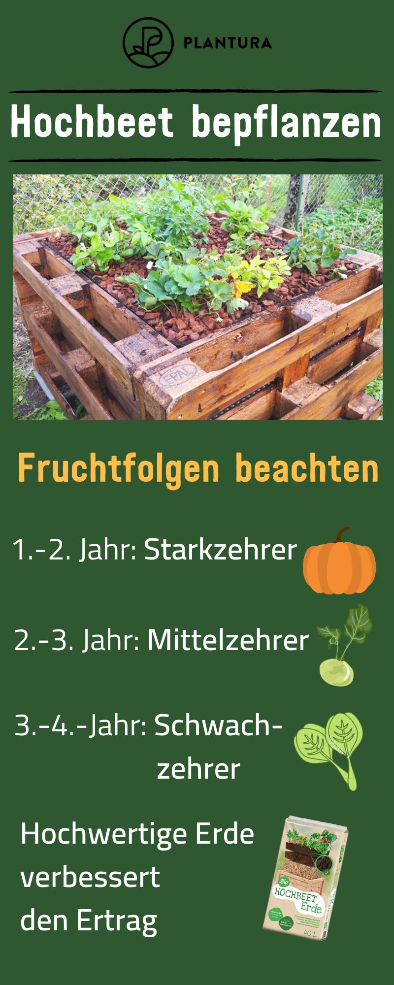 Hochbeet Bepflanzen Pflanzplan Mischkultur Grundungung Der