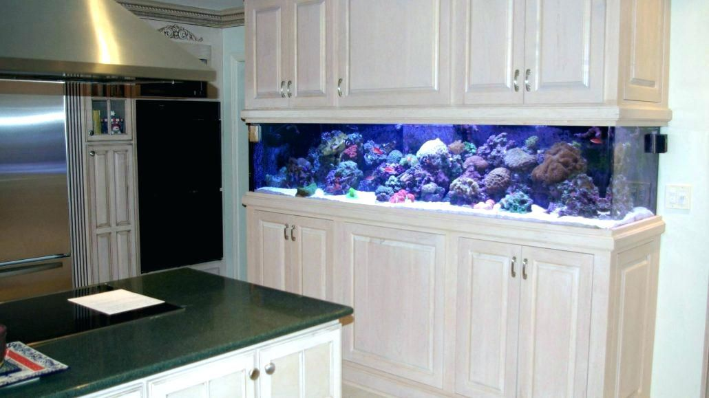 Výsledek obrázku pro built in aquarium cabinet Basement Pinterest