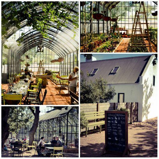 Babel Greenhouse Babylonstoren restaurant review