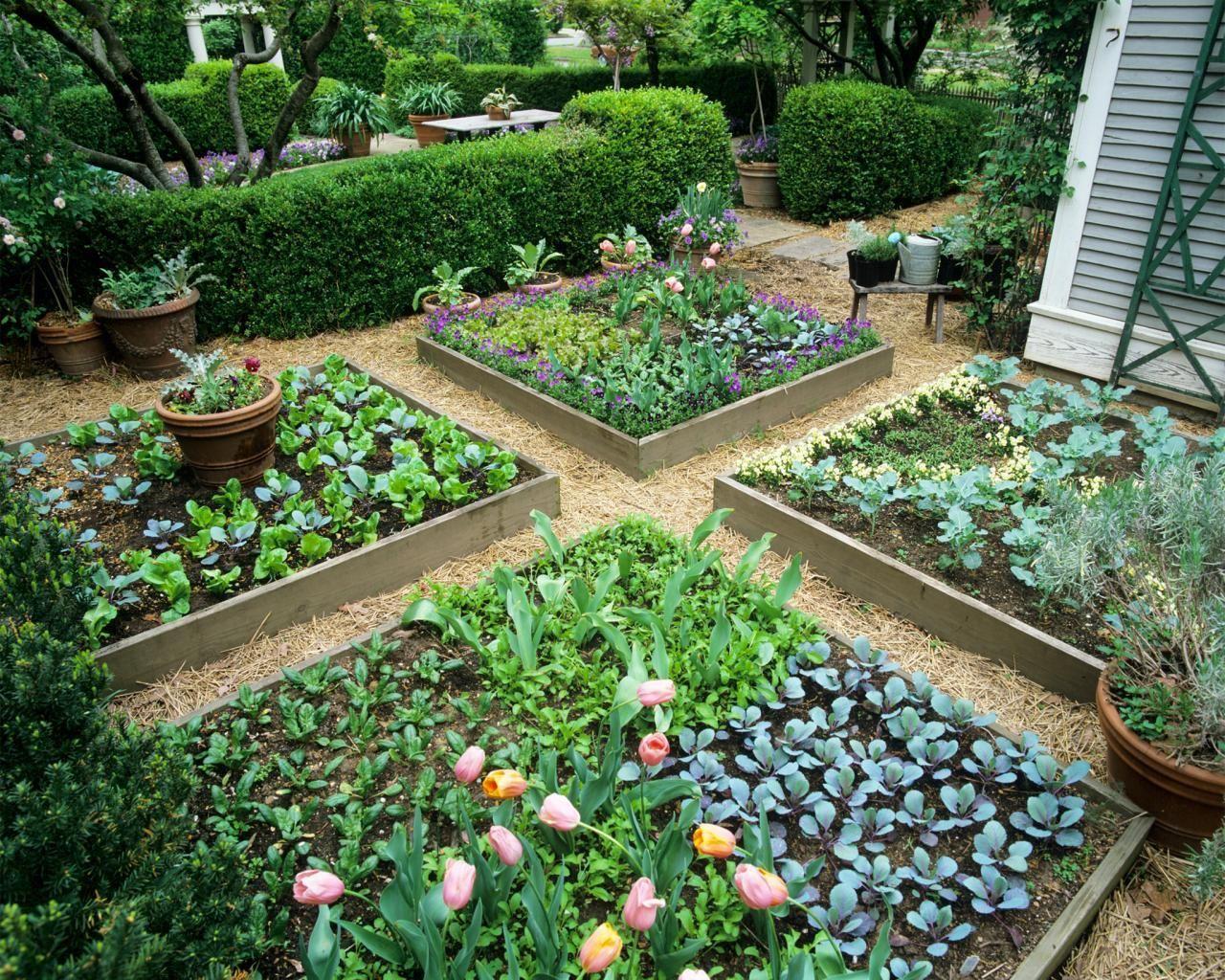 Stunning Modern Kitchen Garden Design Ideas  Raised garden