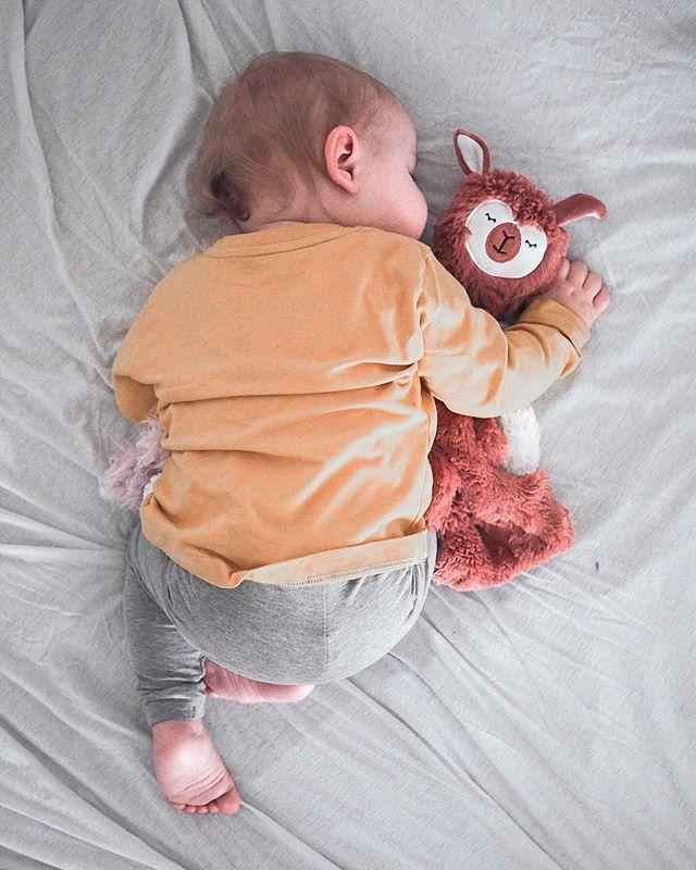 Fettärschige Frau Macht Den Haushalt