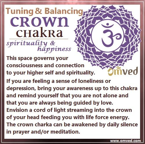 7th (Crown) Chakra TUNING - Color: Diamond White, Location: Crown of head Body Parts Governed: Skin, skull, nervous system and pineal gland This space governs your consciousness and connection to your higher self and spirituality. Time to tune in.