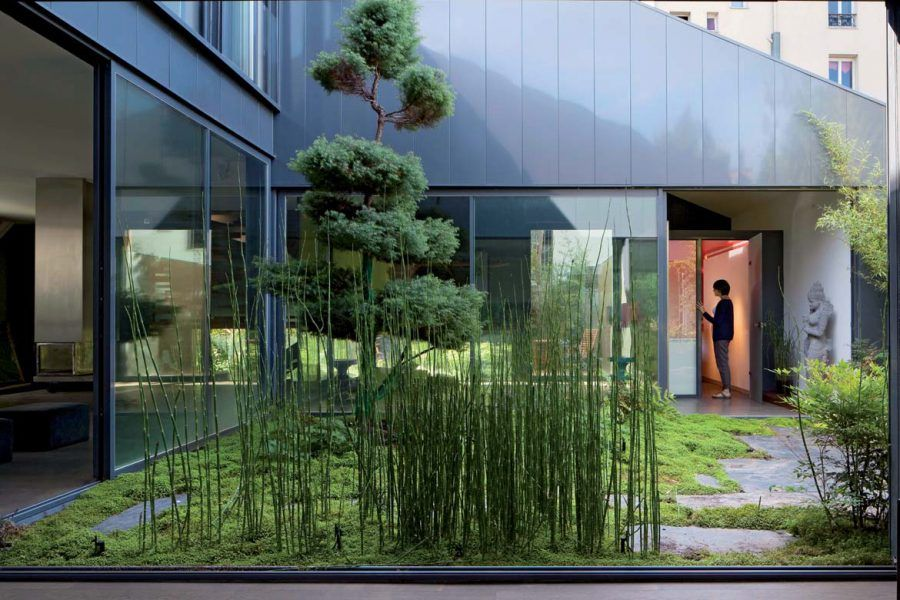 Photo de frank salama atelier darchitecture : gardens plants