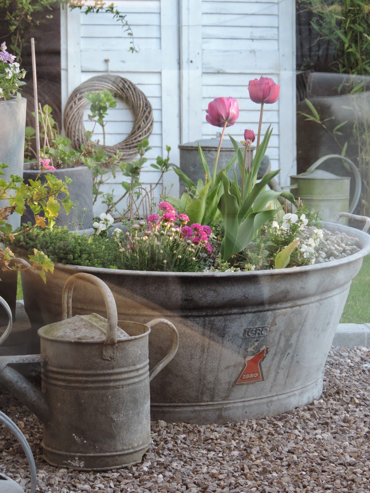 Spring container gardens with pink tulips and