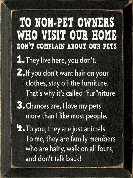 To NonPet Owners Who Visit Our Home Wood Sign 9x12