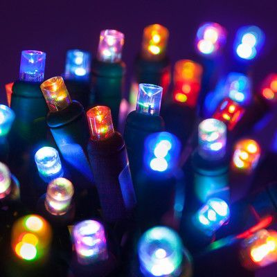 wintergreen lighting 50 multi color led christmas light string