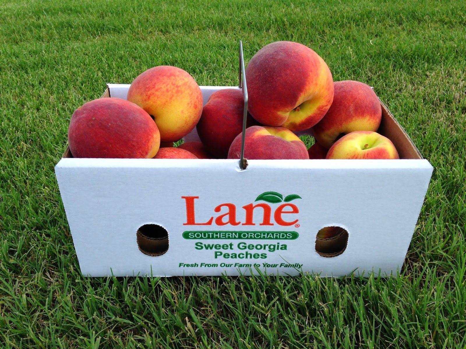 Living Simple in Peach, Perfect peach, Lane