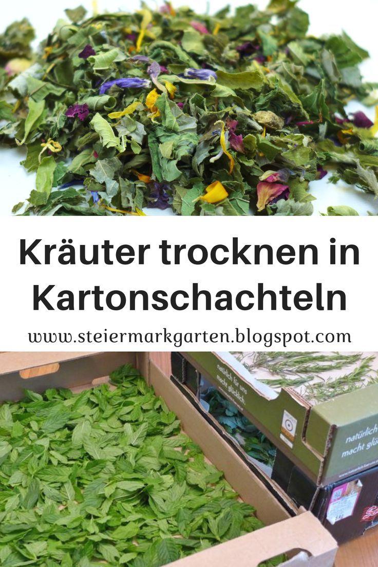 Kräuter trocknen in Kartonschachteln – 2019