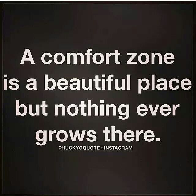 Get Out Of That Comfy Comfort Zone To Grow And Fly High Say It
