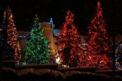 Christmas Light Decorating Ideas Christmas Lights Outdoor Christmas Tree Christmas Tree Lighting