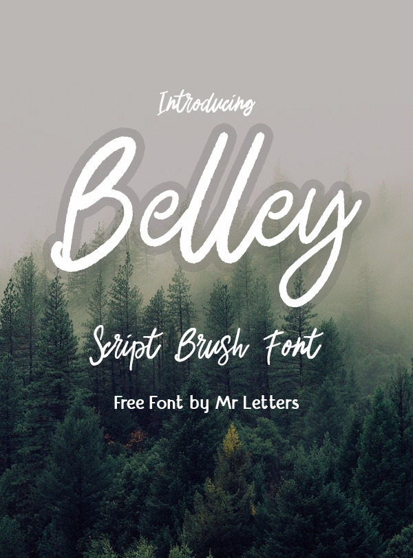 Download 100 Greatest Free Fonts for 2020   Brush font, Best script ...