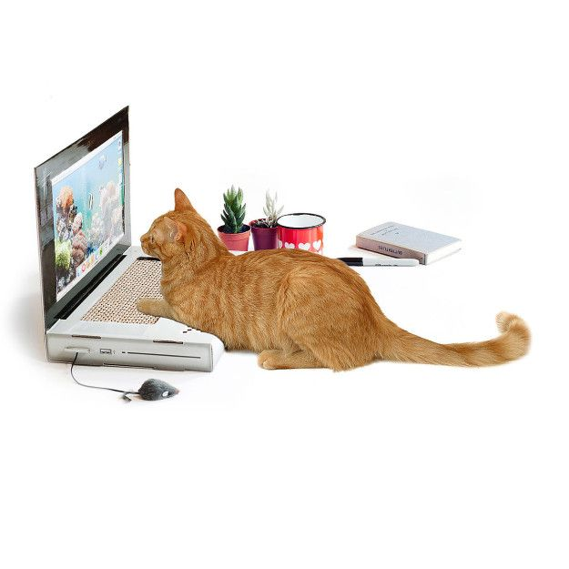 A decoy laptop scratching pad for those trying to get work done. | 23 Insanely Clever Products Every Cat Owner Will Want