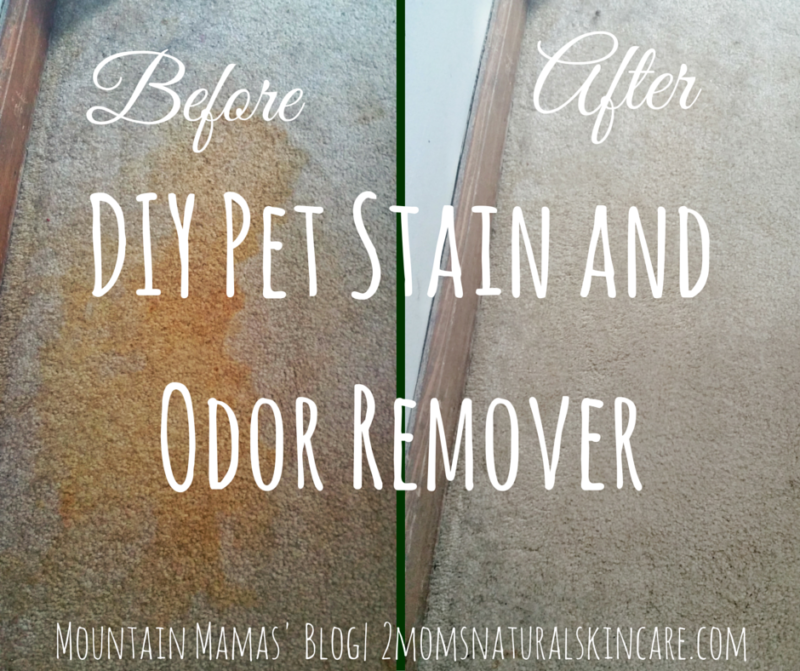 Diy Pet Stain And Odor Remover Odor Remover Pet Odors