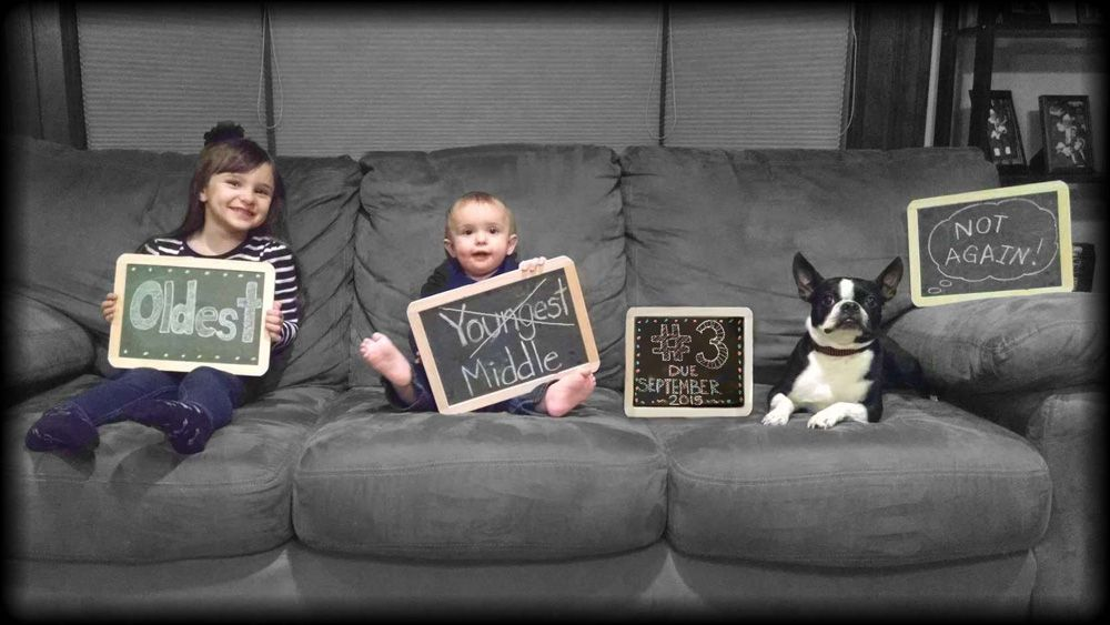 Funny new birth announcement photo with a boston terrier