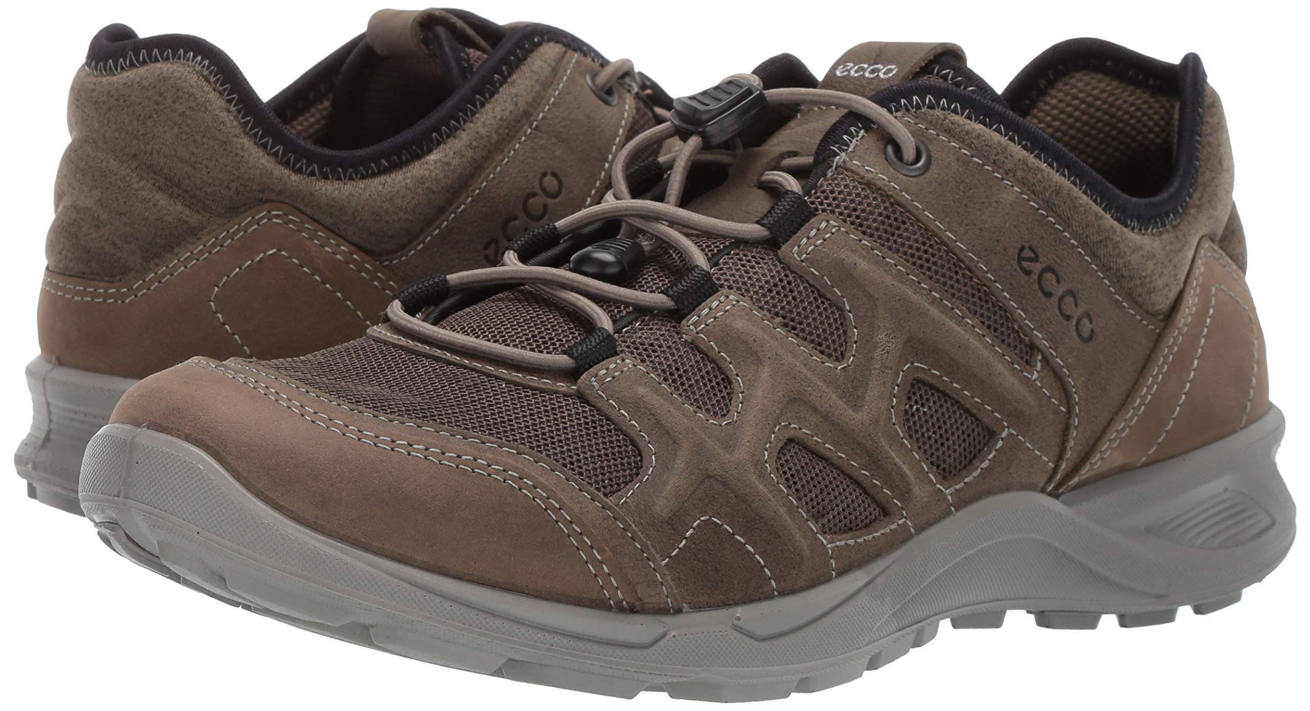 e27bc94bc438 ECCO Mens Terracruise Lite Hiking Shoe Tarmac 40 M EU 66.5 US     For