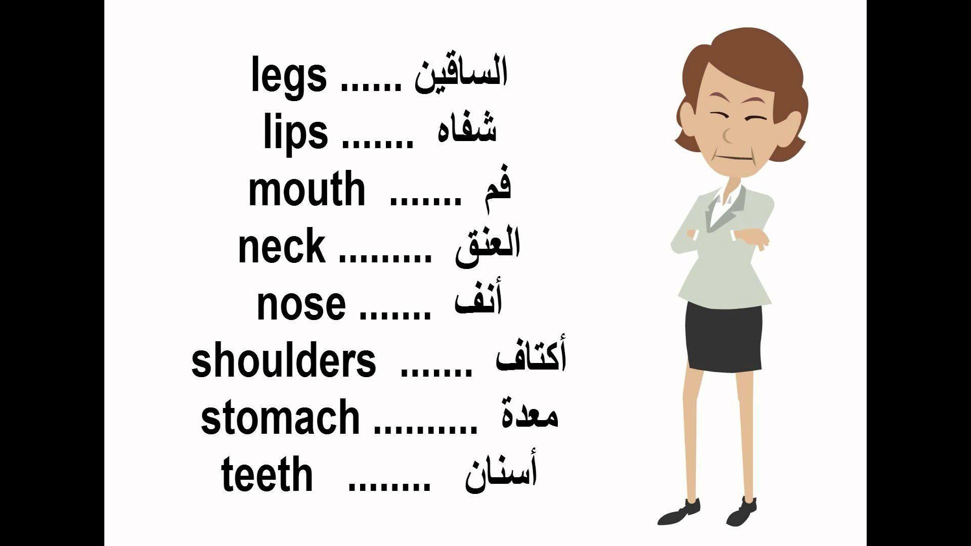 اجزاء و اعضاء الجسم بالانجليزي بالصور Learning Arabic Learning Body Organs