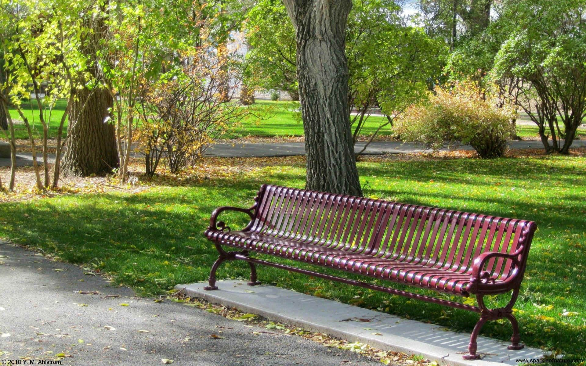 Park Bench Wallpaper Park Bench Bench Colorful Interiors