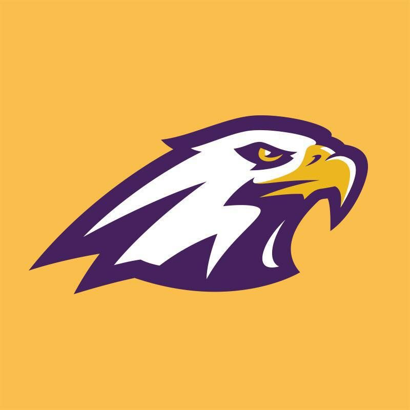 Holy Spirit Catholic School Identity Design Logo Sports Logo Design Eagle Mascot