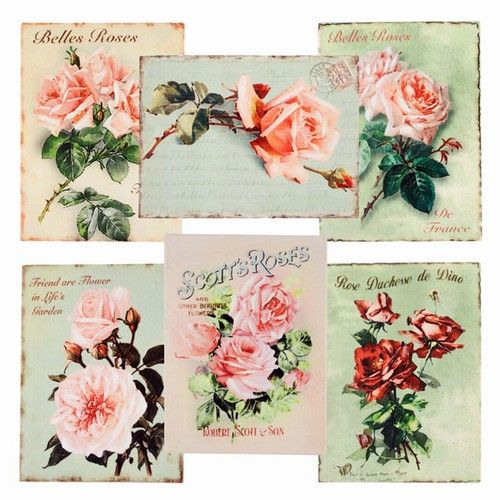Canvas Cottage Rose Vintage Style Art Prints -- Set of Six