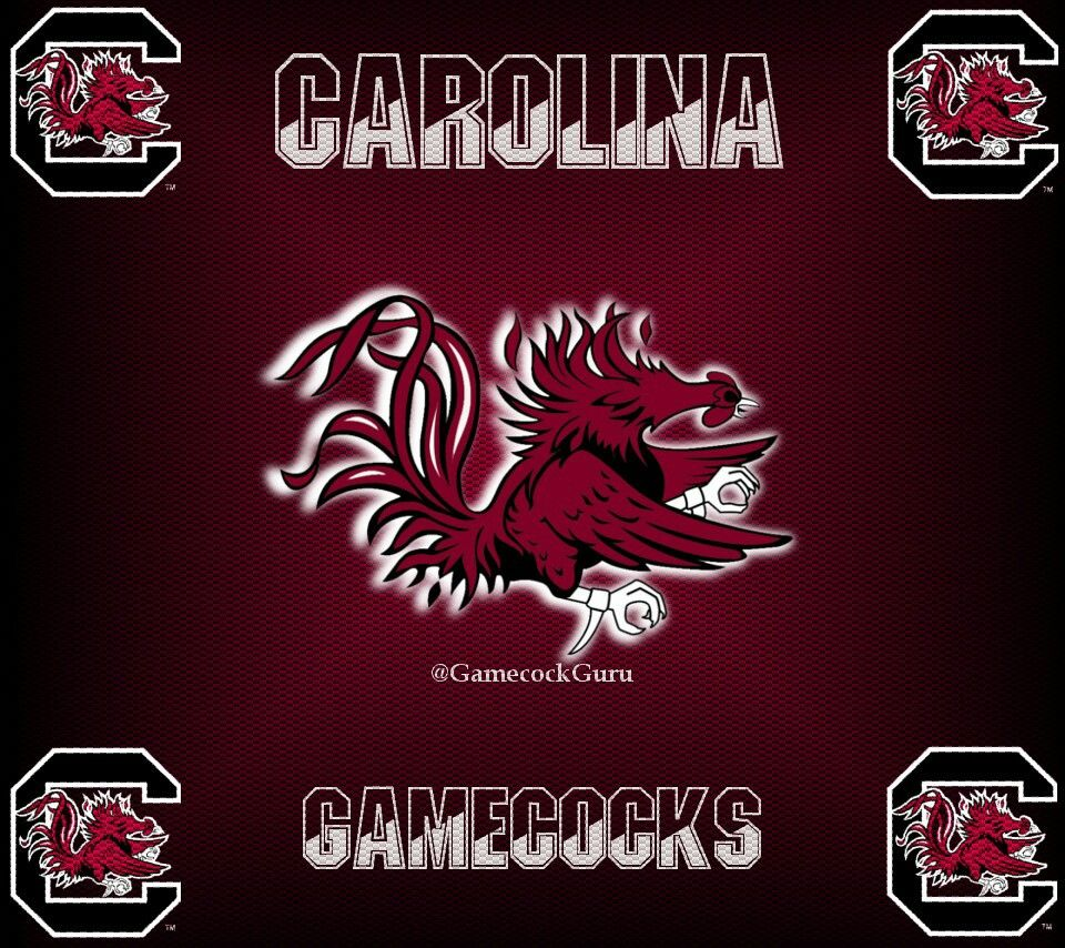 Wall Paper For Droid X Or X2 Carolina Gamecocks Football Go Gamecocks Gamecocks Football