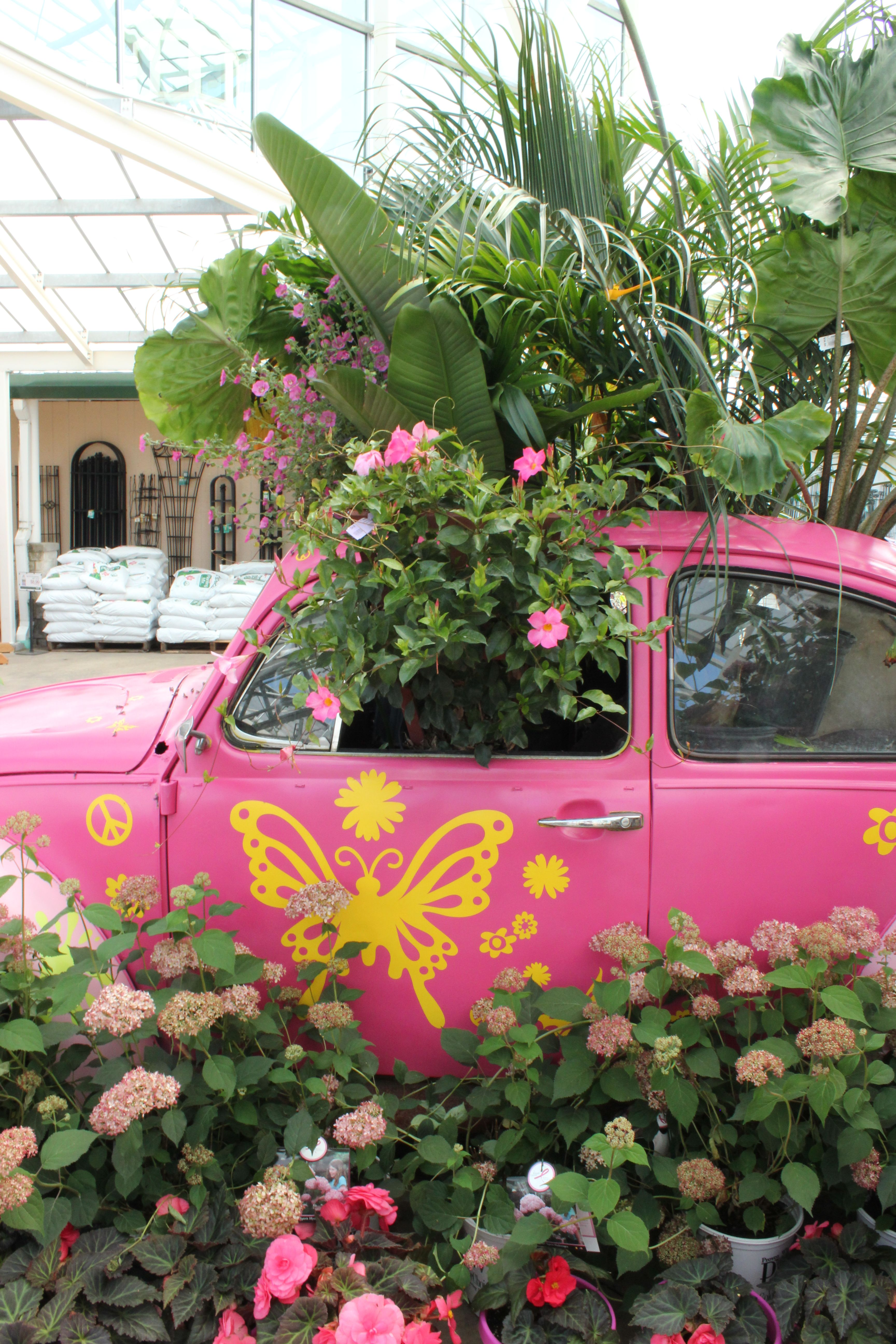 When Petittiu0027s Garden Center In Ohio Hosted Their Pink Day, They Created A  Fund Display Around An Old Pink Volkswagon Beetle!