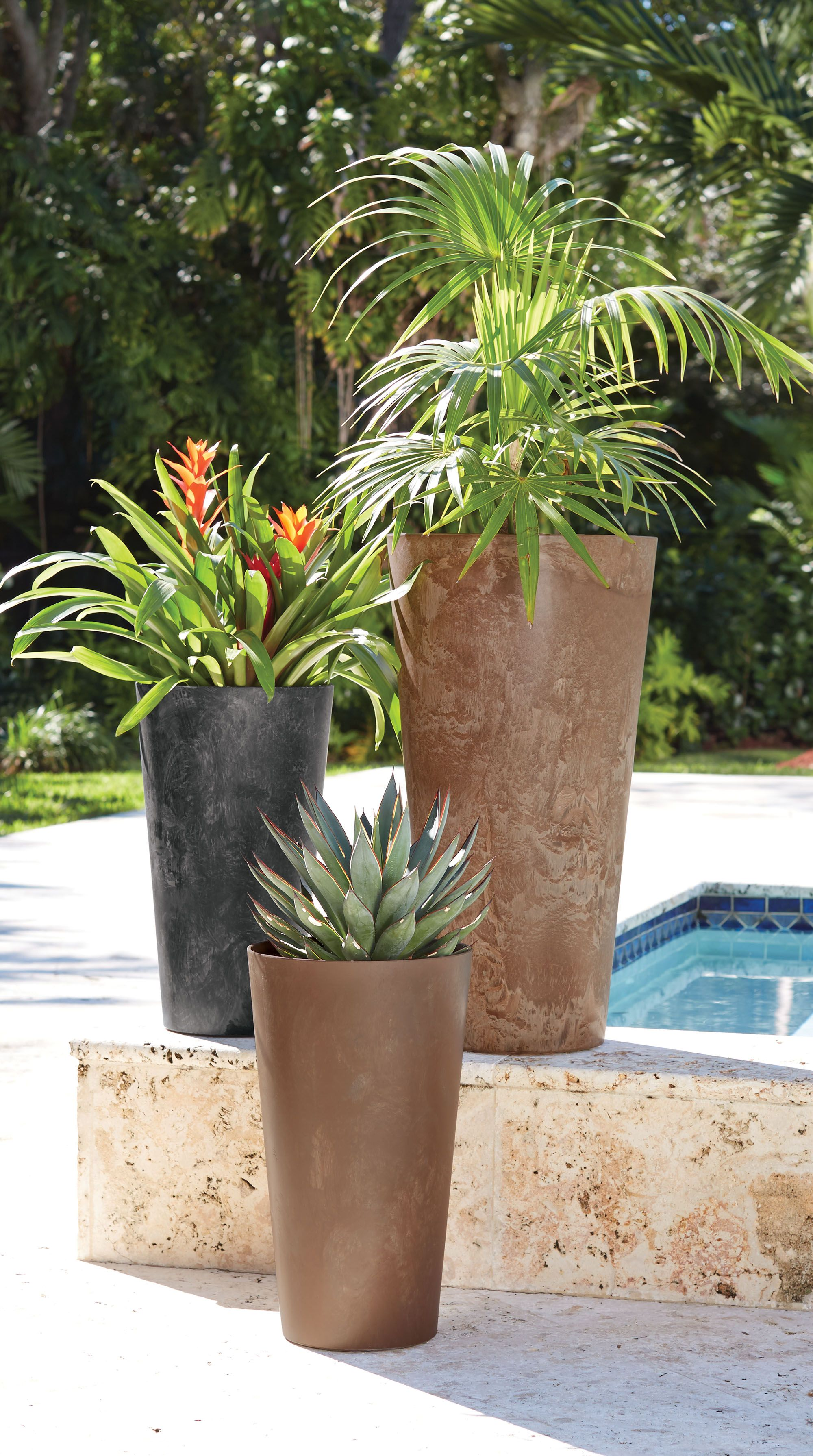Pretty up your pool or patio with planters full of lush