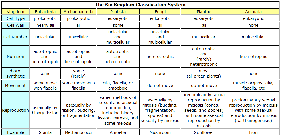 Six Kingdom Classification System | Cell wall, Science ...