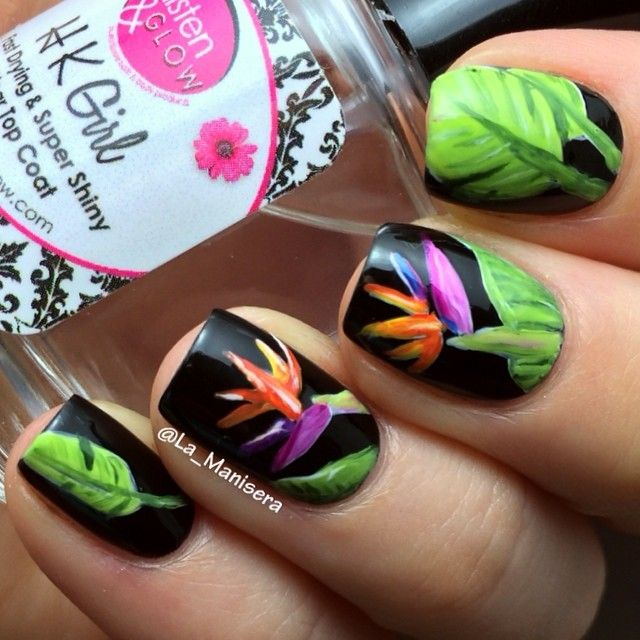 Bird Of Paradise Nails. All Polish. Sealed With The