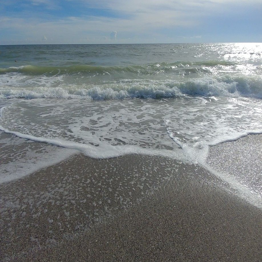 Pin by AFFORDABLE ADVENTURES FOR ALL on MANASOTA KEY BEACH ...