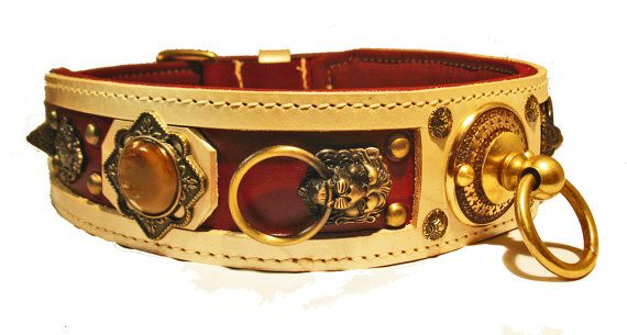 2.5 inch wide collar with champagne borders on a rich red leather ...