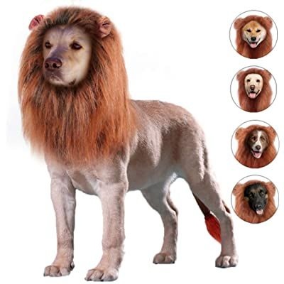 OMG Adorables Lion Mane Costume for Cat