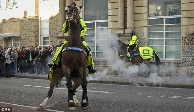 Police Horses Animals In Human Society In 2021 Horses Military Dogs Beautiful Horses