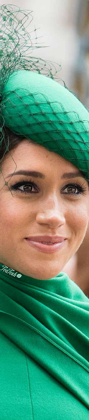 ❈Téa Tosh❈ A portrait of a smiling Duchess of Sussex.  #teatosh #MeghanMarkle