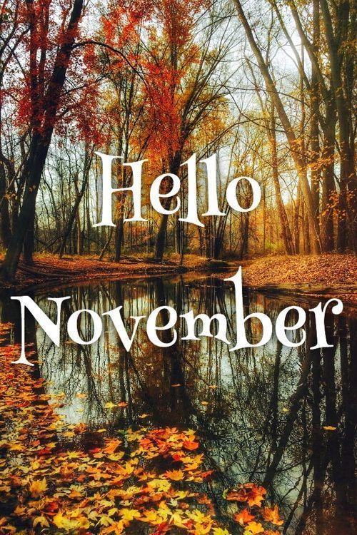 Hello November .... #welcomenovember Hello November .... #hellonovembermonth