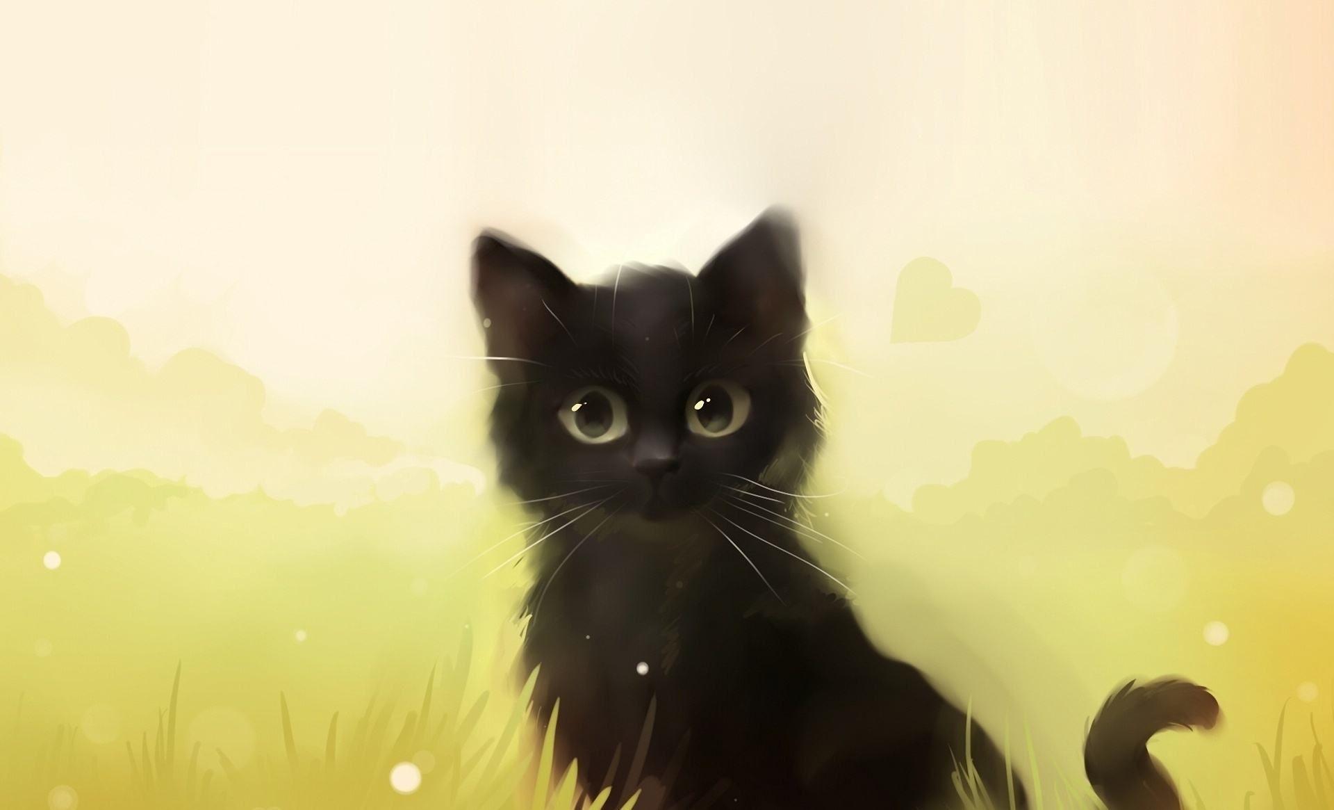 Обои кот, Кошка. Кошки foto 6