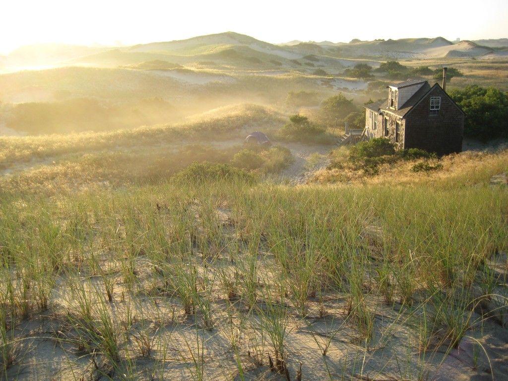 Dune Shacks Cape Cod Part - 31: Dune Shack Cape Cod Suzanne Lewis