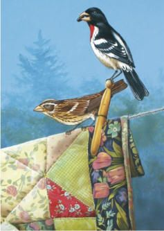 "Adele Earnshaw  /""One of a Kind/"" Chickadee Art Print 12/"" x 4/"""