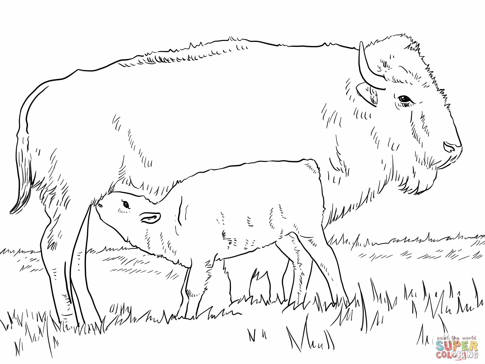 Bison Coloring Page Within Alphabet Letters Coloring Pages Zombiku Xyz Baby Coloring Pages Animal Coloring Pages Coloring Pages