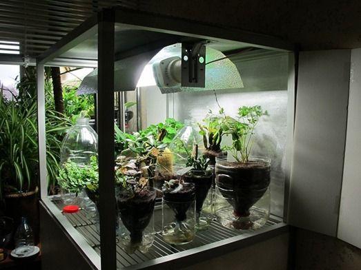 Hydroponics System Guide - Grow Box Tutorial - Indoor Gardening fundam