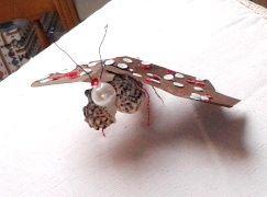 con le ali di una farfalla speciale
